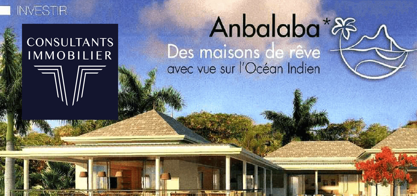 Article Consultants Immobilier